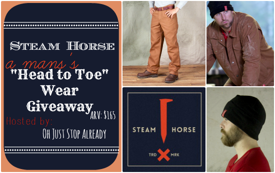 Signup for the Steam Horse blogger opp. Giveaway starts Nov 25.
