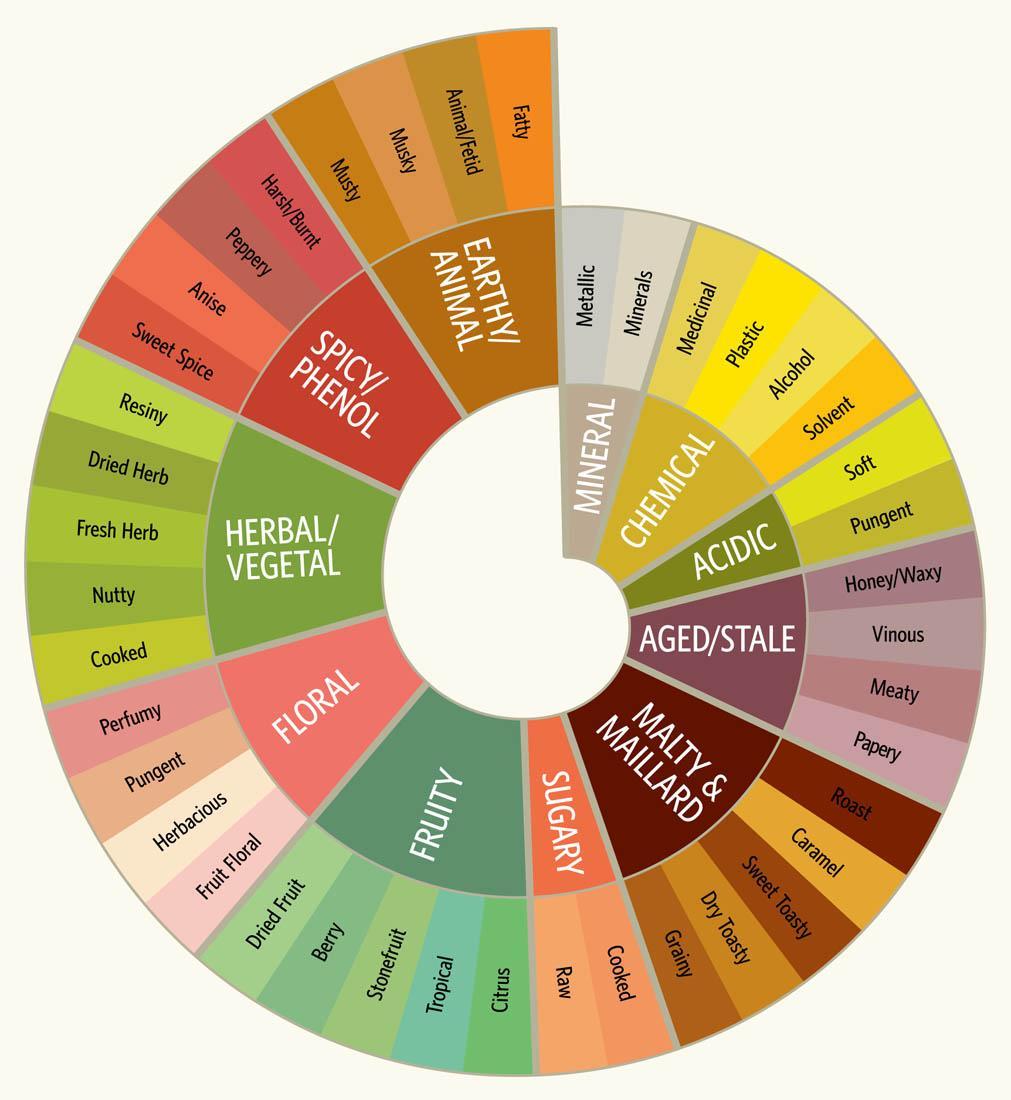 Beer Tasting Chart Luminary Geoff Gale