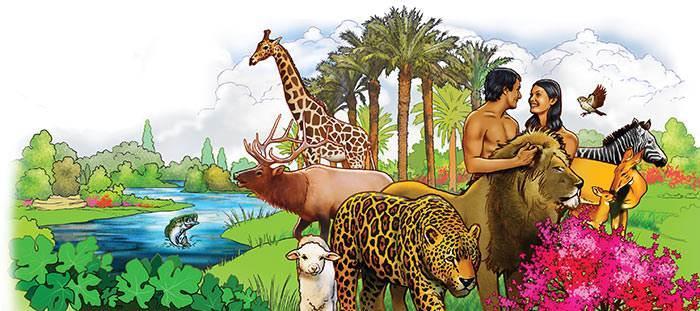 Resultado de imagen para dios creo a los animales