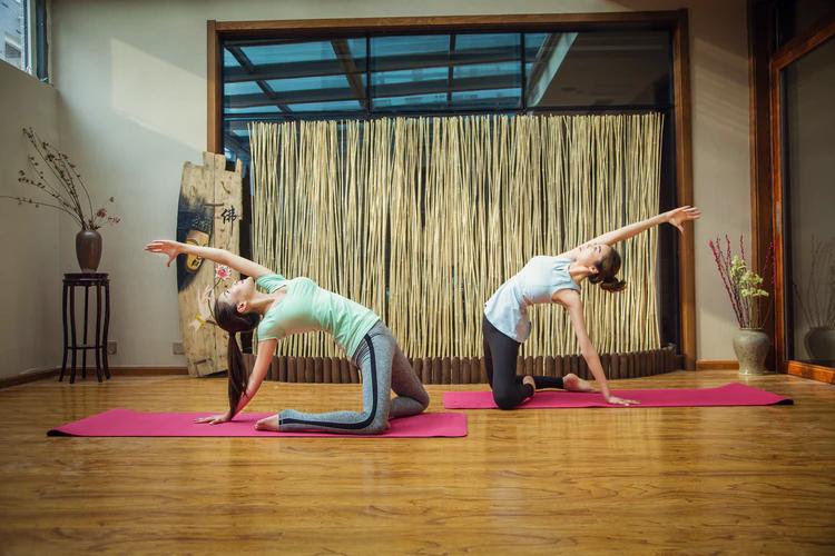 plastic exercises, Stretching vs. Yoga