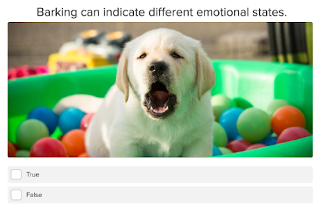 quiz question about barking and dog's emotional state