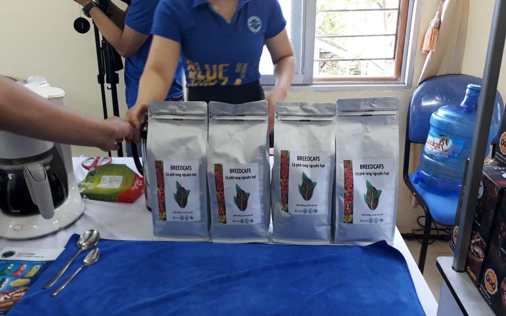 F1 coffee beans Vietnam