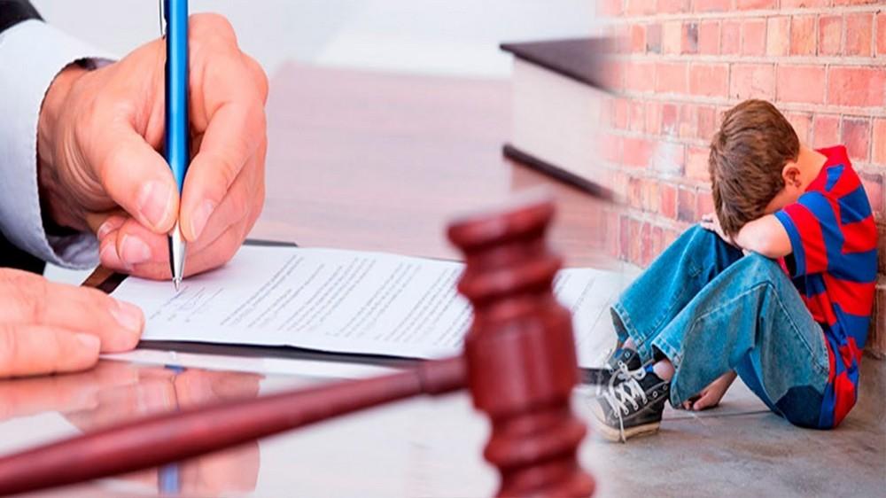 лишение родительских прав матери судебная