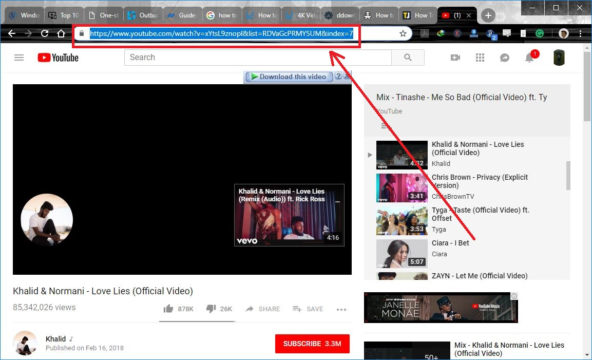 copy playlist URL to download a youtube playlist at once