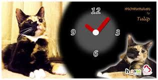 ผลการค้นหารูปภาพสำหรับ นาฬิกากับแมว