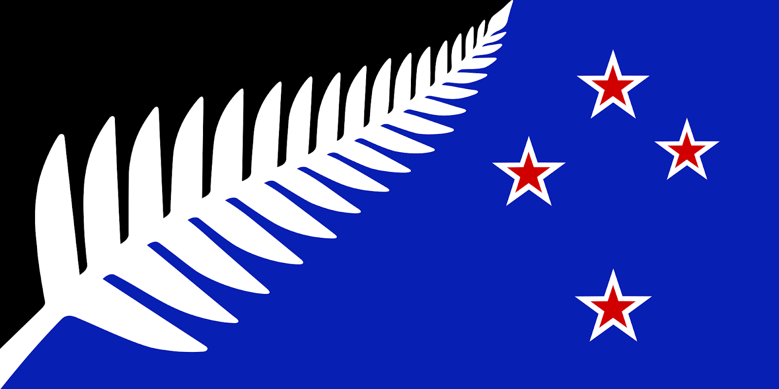 The silver fern flag of the