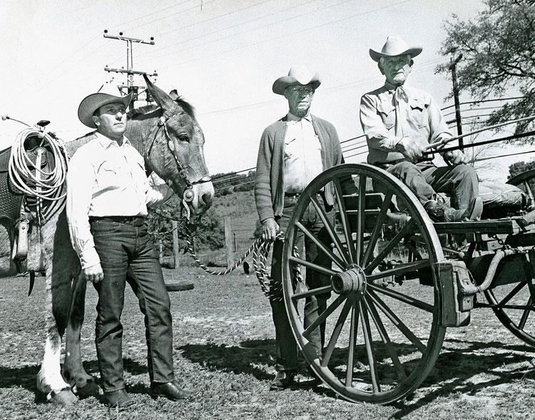 Baci (far left) with Joe Martin and Henry Sanguinetti, late 1960s