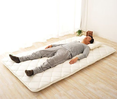 Best Futon Mattress For Bad Back