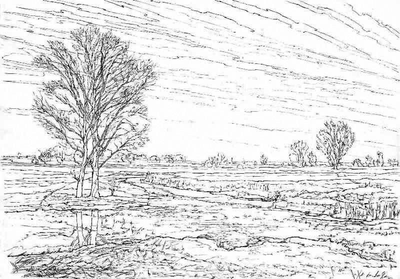 THE SALAMONTA IN THE LOWLANDS I (WET MEADOW) - Sketch (Ink).jpg