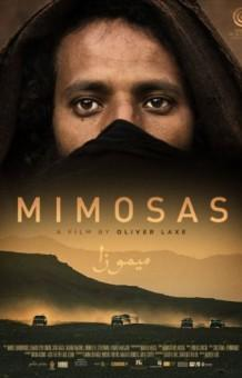 Image result for mimosas movie review