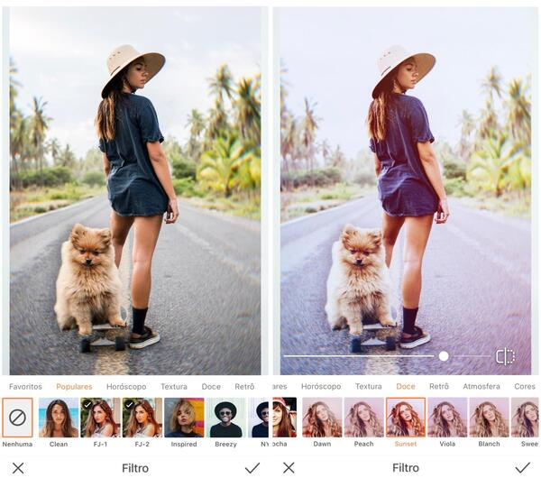 foto de um cachorro e uma menina no skate sendo editada pelo airbrush