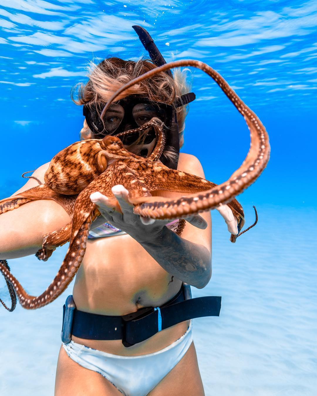 Find an Octopus - #47 of 50 Best Things to do on Oahu