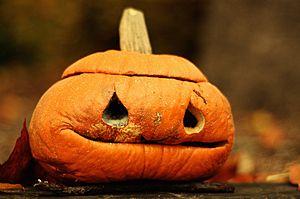 rotten pumpkin.jpg