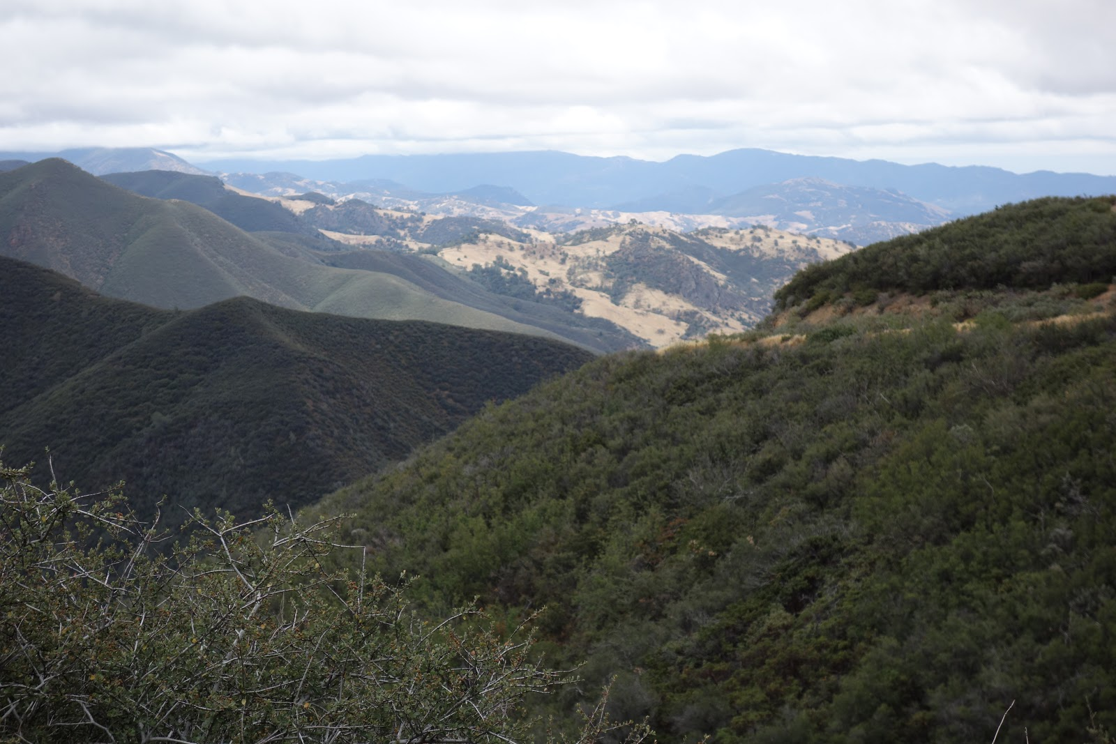 View of Santa Ynez Mountains from Happy Canyon Road on ride by bike