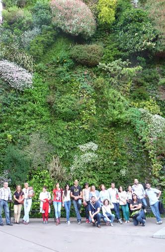 Curso de jardines verticales en bogot colombia 11 y 12 for Jardines verticales pdf