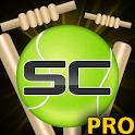 Street Cricket Pro apk