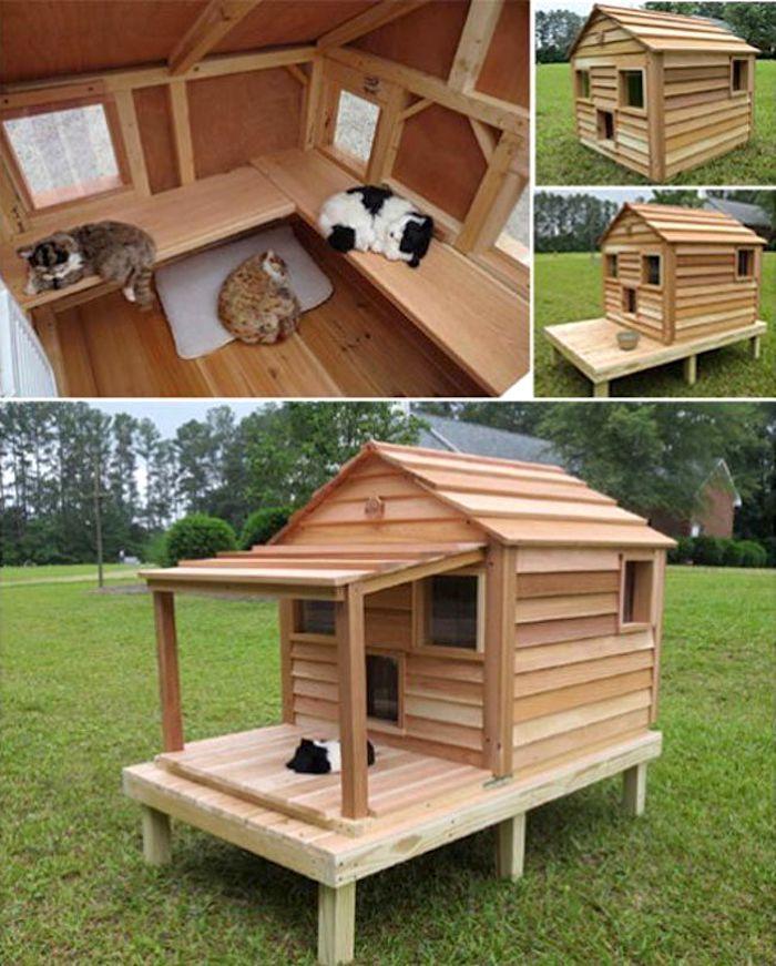 Домик для кошек с лавочками внутри