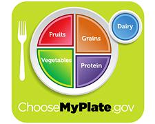 Food Pyramid Replacement - MyPlate: The USDA's Food Recommendations