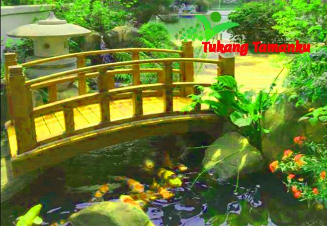tukang kolam ikan koi di taman