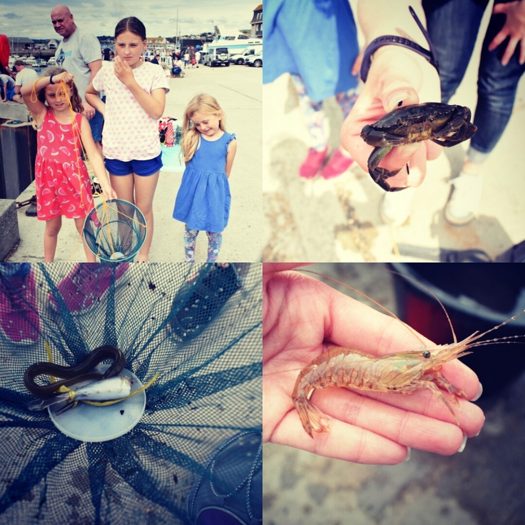 "(<img alt=""west bay in Dorset crabbing with kids"">)"