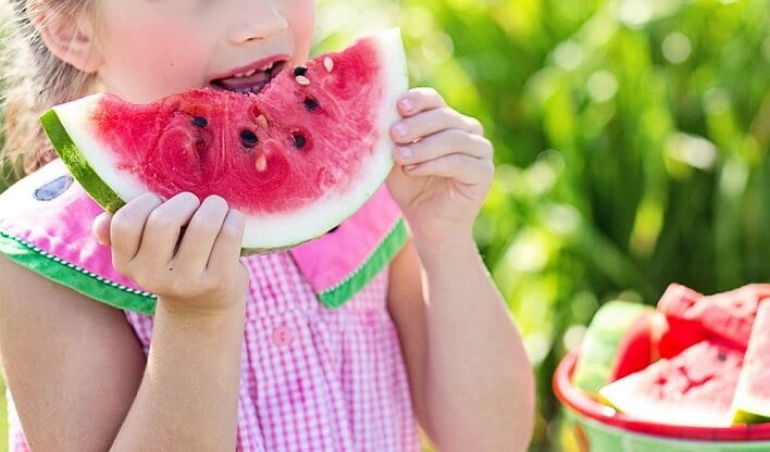 Watermelon cultivation guide
