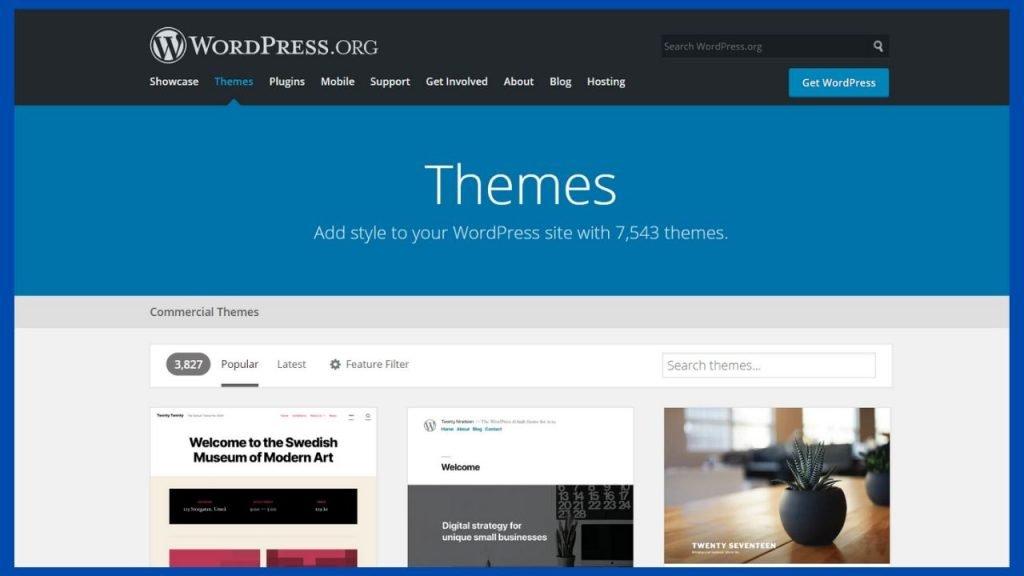 wordpress.org vs wordpress.com themes