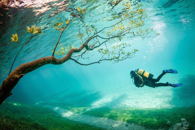 """Giải ba thuộc về Marc Henauer với tác phẩm """"Diver in Magic Kingdom"""", chụp dưới hồ Grüner See, Tragöß, Áo."""