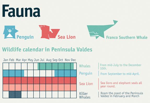 Wann Sie nach Peninsula Valdes reisen sollten