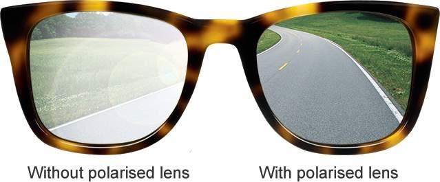 lunette polarisante peche eau douce