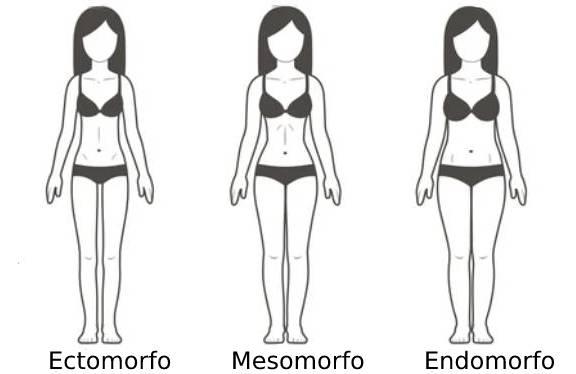 Ilustración de los distintos tipos de cuerpos femeninos de acuerdo a su somotipo