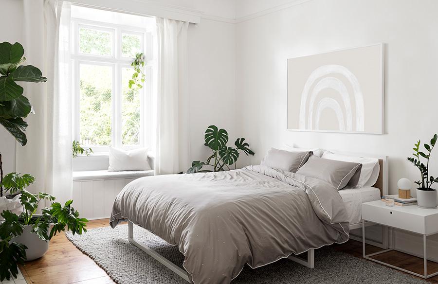 ต้นไม้ฟอกอากาศในห้องนอนทำงานอย่างไร?