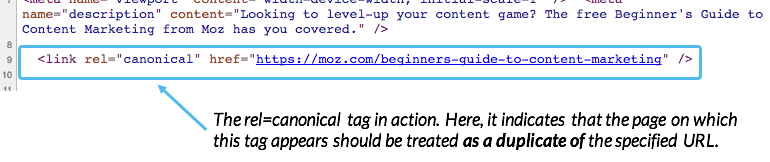 Highlighted rel=canonical tag in inspect element.
