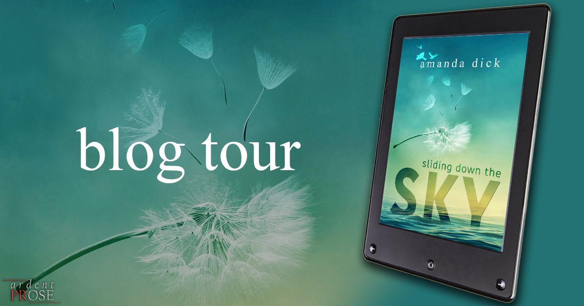sliding down the sky - blog tour.jpg