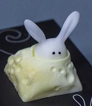 CYSM - Moon Bunny