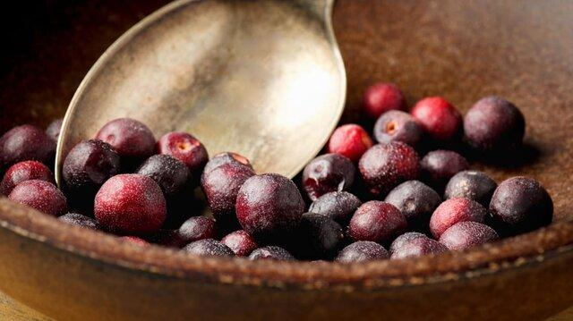 All about Phalsa: The immune system booster fruit - Agrovatika Blogs