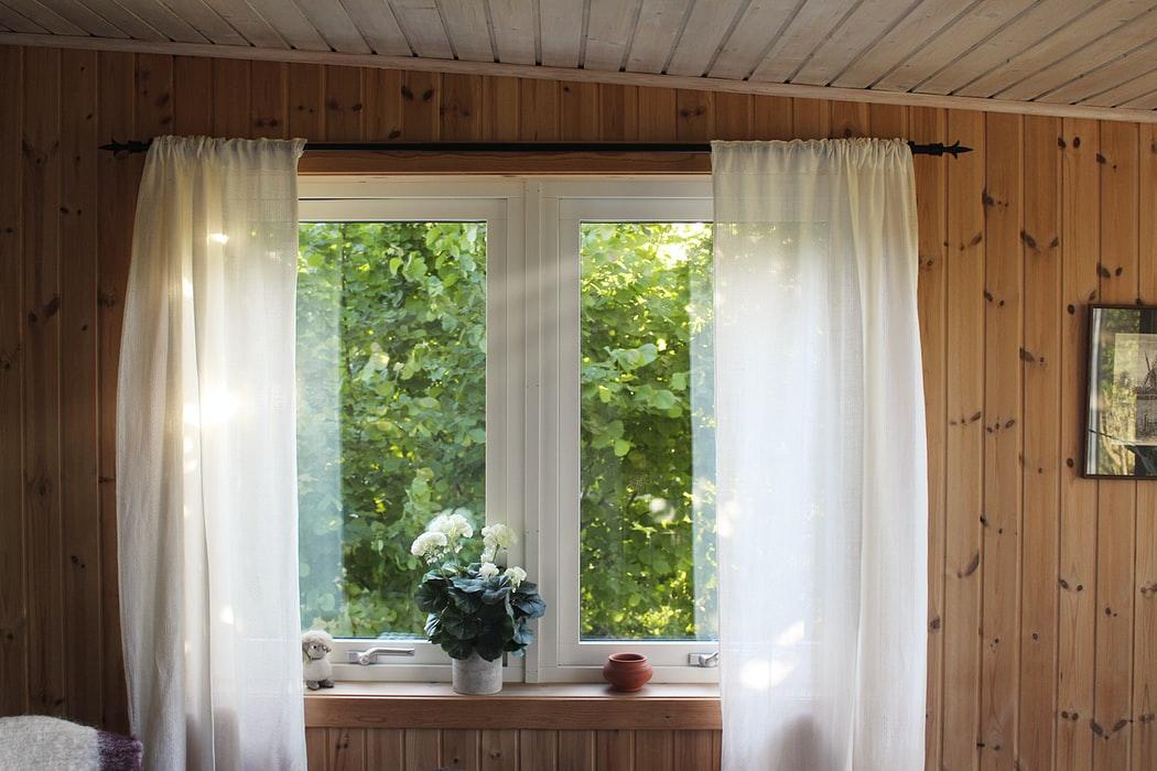 Plants on a windowsill