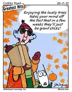Image result for fall weather funny