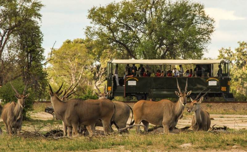elephant-express---eland-spotted-from-the-elephant-express-e1.jpg