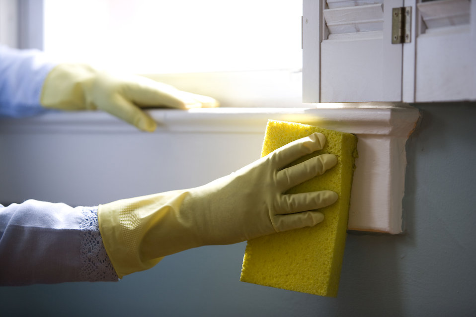 16323-an-african-american-woman-cleaning-a-window-pv.jpg