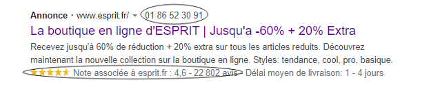 Campagne Adwords | extension d'appel, extensions d'avis
