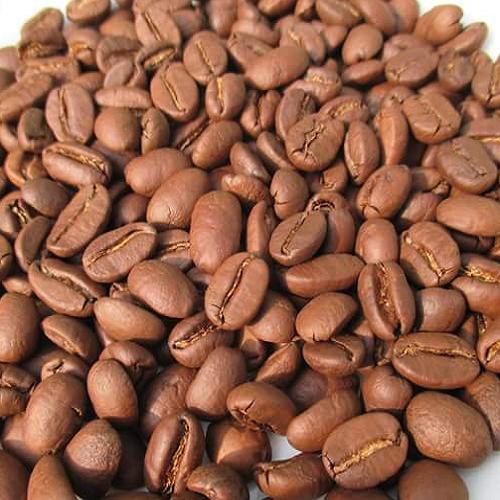 Cà phê giá sỉ cho quán của Motherland tại sao không?