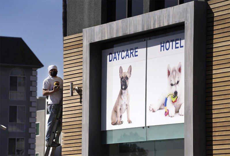 女神卡卡飼養的2隻法鬥,昨天晚上在好萊塢遭歹徒劫走,幫她遛狗的人遭到槍擊,受傷送醫。美聯社