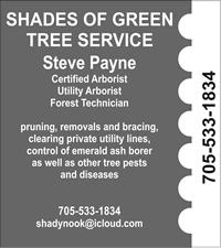 shadesofgreen.jpg