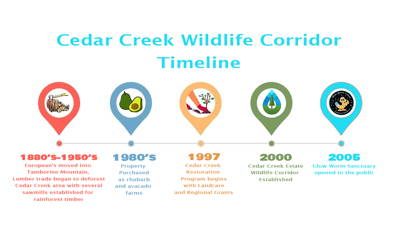 Cedar Creek Wildlife Corridor Timeline