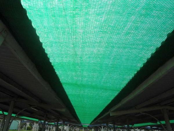 Kết quả hình ảnh cho lưới che nắng mái tôn