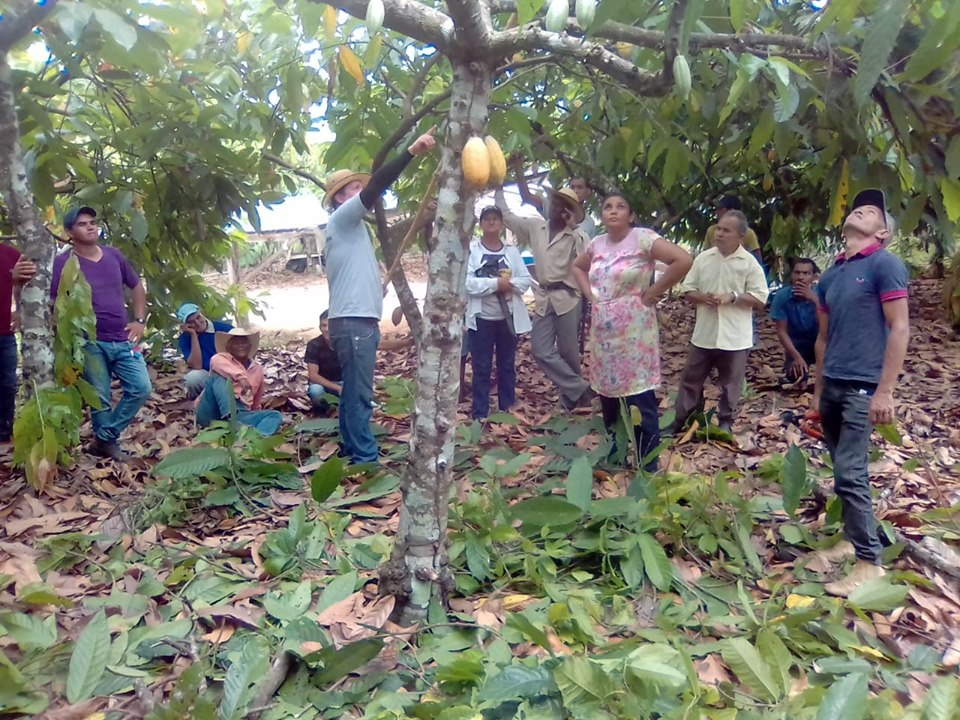 Cacao en el Amazonas, Solidaridad