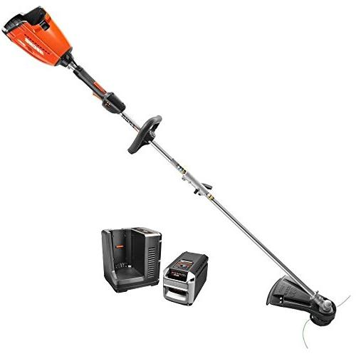 compare echo vs stihl trimmer
