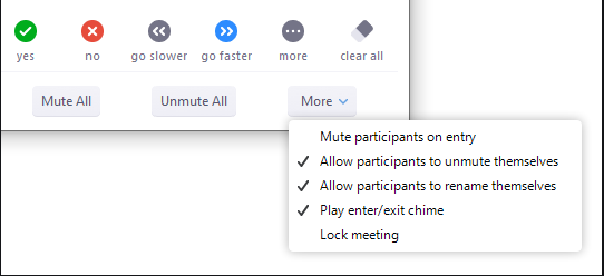 Participant privilege selection screen in Zoom