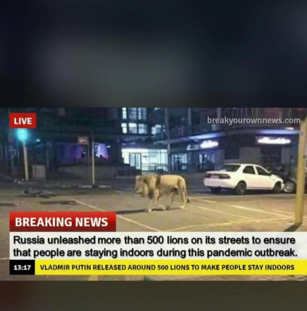 Breaking News: Lion on the street