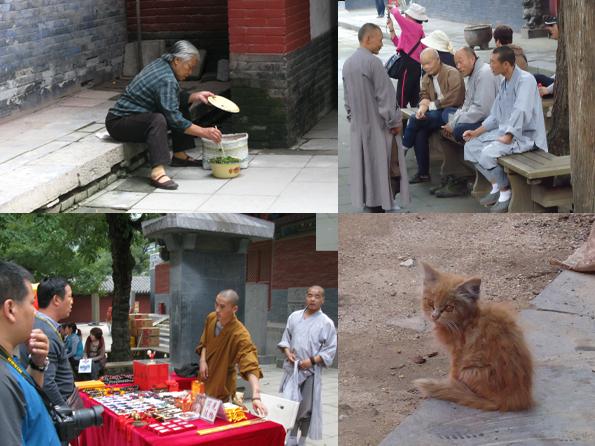 Стажировка в Китае. Шаолиньский монастырь.